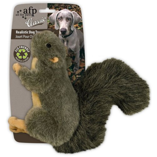Classic - Squirrel Small - Hundespielzeug kleines...