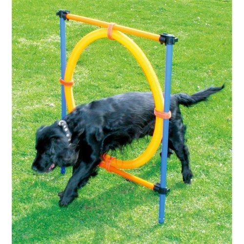 Agility Sprungring Hunde Trainingshürde - Agility jumping ring - 117x10x10cm