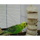 Vogelspielzeug Original Bird Kabob ideal für Sittiche und kleine Papageien